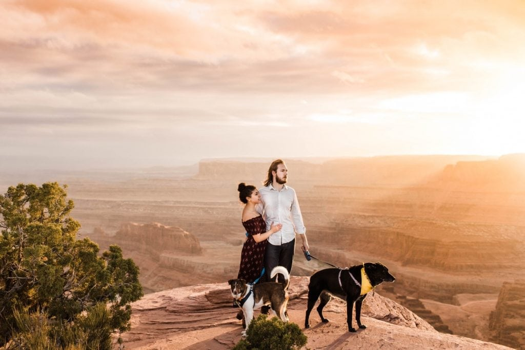 engaged couple admiring sunset at the edge of a cliff with their two dogs by their side