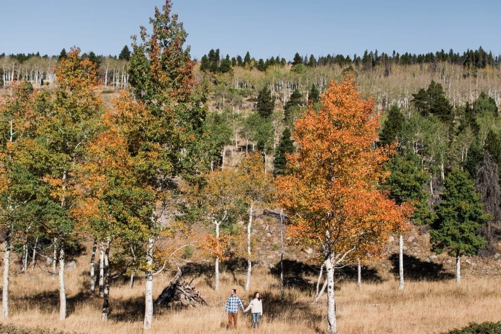 engaged couple standing beneath aspen trees during their Rocky Mountain National Park engagement session in September | Rocky Mountain elopement photographers