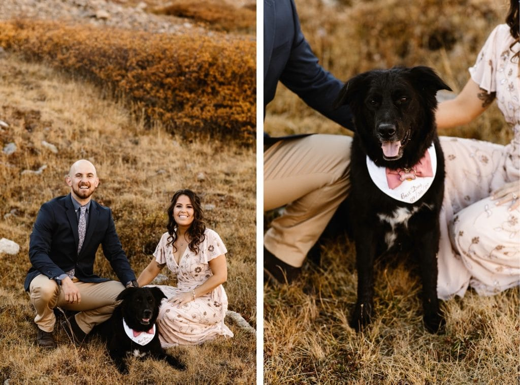 micr wedding bride and groom photographed with their dog